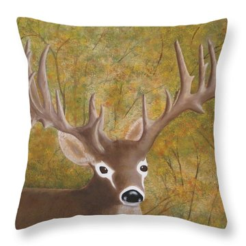 Caught In The Headlights Throw Pillow by Tim Townsend
