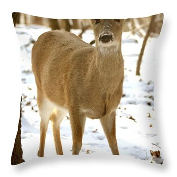 Caught Playing In The Snow Throw Pillow by Lena Wilhite