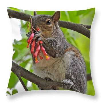Caught Red Handed Throw Pillow by Eve Spring