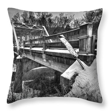 Caution Throw Pillow by Alan Raasch