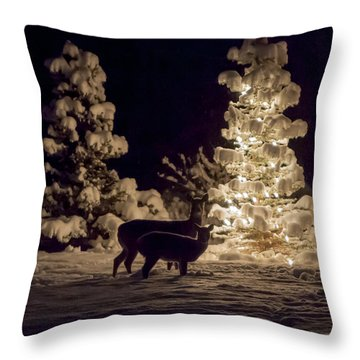 Throw Pillow featuring the photograph Cautious by Aaron Aldrich