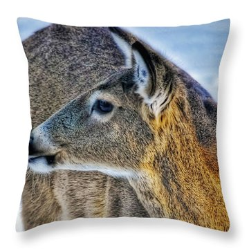 Cautious Deer Throw Pillow