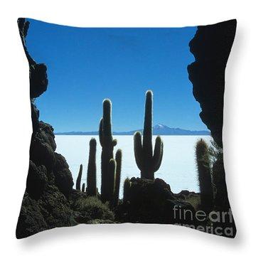 Cave And Cacti Incahuasi Island Throw Pillow