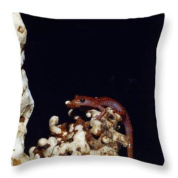 Cave Salamander Throw Pillow