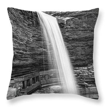Cavern Cascade Watkins Glen Throw Pillow