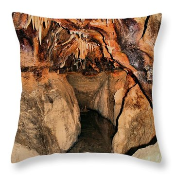 Cavern Path Throw Pillow by Dan Sproul