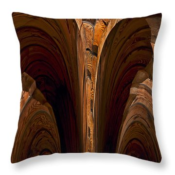 Caverns Of Wood Throw Pillow by Murray Bloom