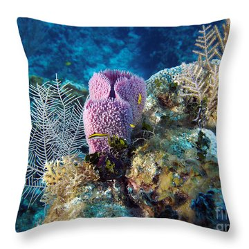 Cayman Reef Throw Pillow