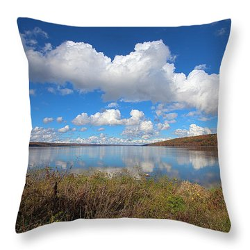 Throw Pillow featuring the photograph Cayuga Lake In Colorful Fall Ithaca New York II by Paul Ge