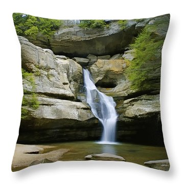Cedar Falls Throw Pillow