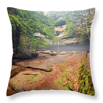 Cedar Falls Throw Pillow