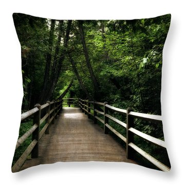Cedar Pathway 2.0 Throw Pillow