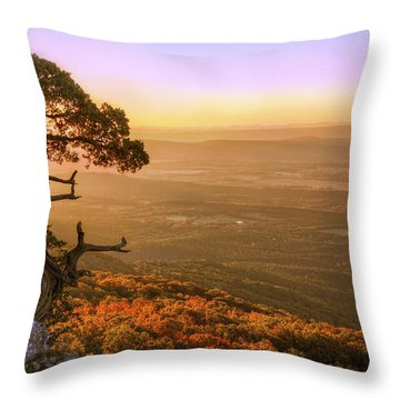 Cedar Tree Atop Mt. Magazine - Arkansas - Autumn Throw Pillow