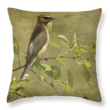 Cedar Waxwing Berry Pickin  Throw Pillow