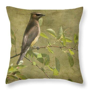 Cedar Waxwing Berry Pickin  Throw Pillow by Betty  Pauwels