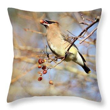 Cedar Waxwing Eating A Cherry Throw Pillow