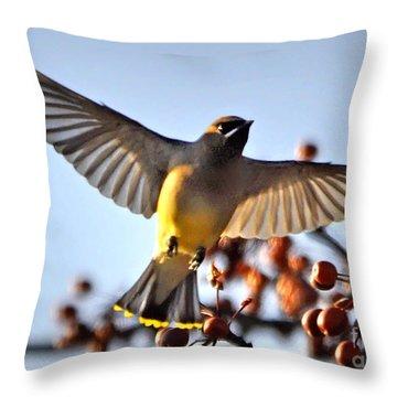 Cedar Waxwing Flight Throw Pillow