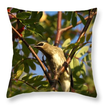 Throw Pillow featuring the photograph Cedar Waxwing by James Peterson