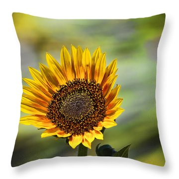Celebrating The Sunlight Throw Pillow
