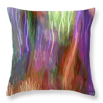 Celeritas 12 Throw Pillow