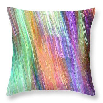 Celeritas 19 Throw Pillow
