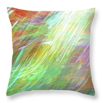 Celeritas 26 Throw Pillow