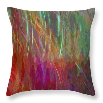 Celeritas 28 Throw Pillow