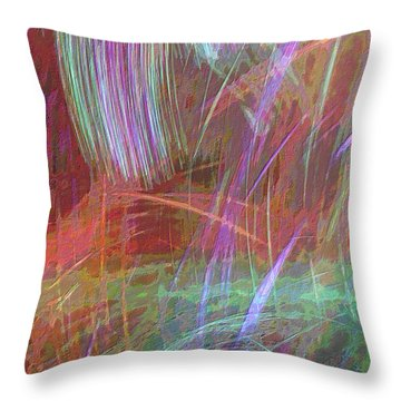 Celeritas 29 Throw Pillow
