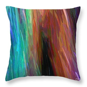 Celeritas 71 Throw Pillow
