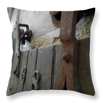 Throw Pillow featuring the photograph Cell 6x8 by Richard Reeve