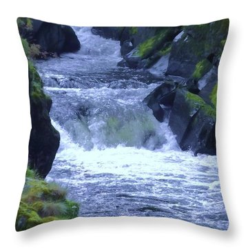 Throw Pillow featuring the photograph Cenarth Falls by John Williams