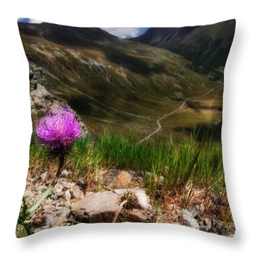 Centaurea Throw Pillow