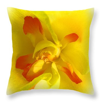 Center Daffodil Throw Pillow by Tina M Wenger