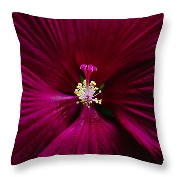 Center Folds Throw Pillow