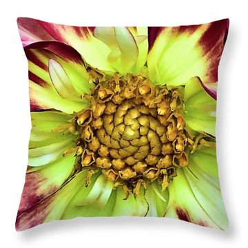 Center Of A Flower Throw Pillow by Janice Drew