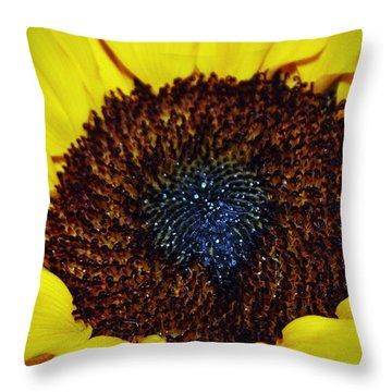Center Of A Sunflower Throw Pillow by Cynthia Guinn