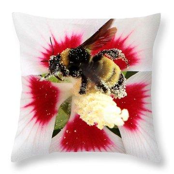 Center Of Attention Throw Pillow by John Freidenberg