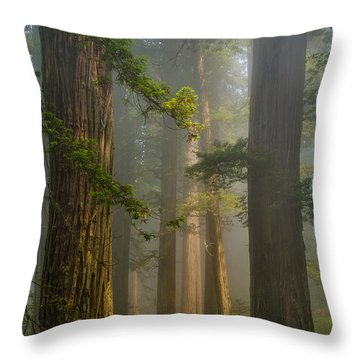 Center Of Forest Throw Pillow