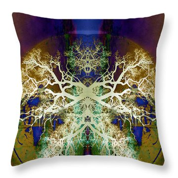 Center Of The Universe Throw Pillow by Jan Amiss Photography