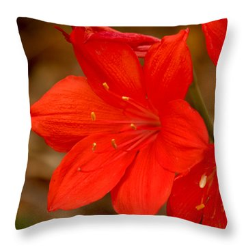 Center Stage Throw Pillow by Art Block Collections