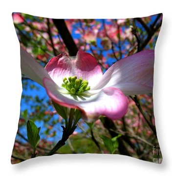 Center Stage Throw Pillow