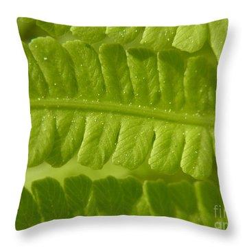 Throw Pillow featuring the photograph Centering by Agnieszka Ledwon