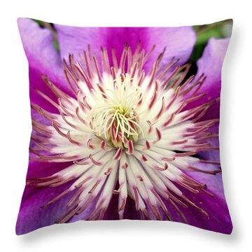 Centerpiece Throw Pillow