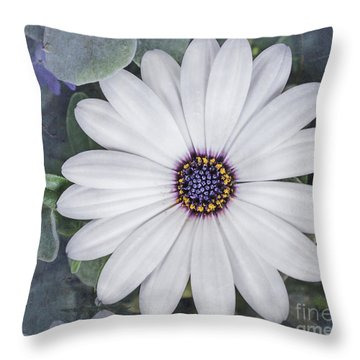 Central Beauty Throw Pillow