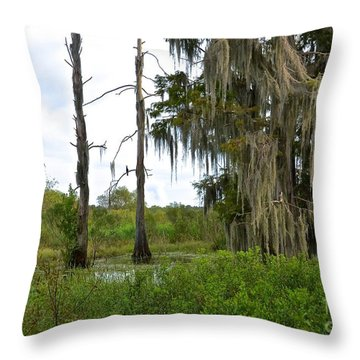 Central Florida Outdoors Throw Pillow by Carol  Bradley