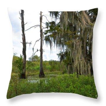Central Florida Outdoors Throw Pillow