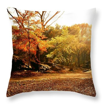 Central Park Autumn Trees In Sunlight Throw Pillow