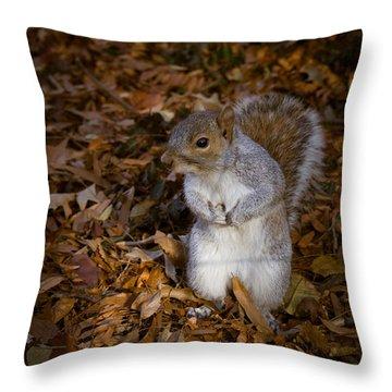 Central Park Squirrel Throw Pillow by Marta Grabska-Press