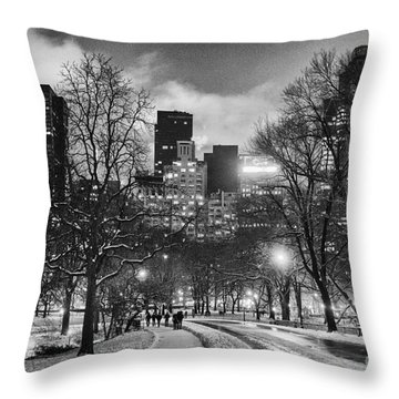 Central Park View Throw Pillow