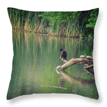 Central Park Snooze Throw Pillow